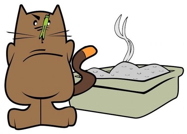 Bubeck-Katzenklo-Geruch