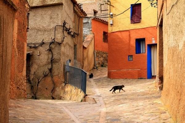 Bubeck-Katze-Urlaub